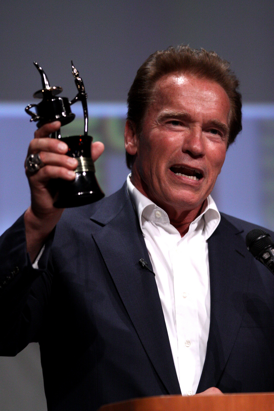 Extraordinary Life Lessons From Arnold Schwarzenegger ... Arnold Schwarzenegger